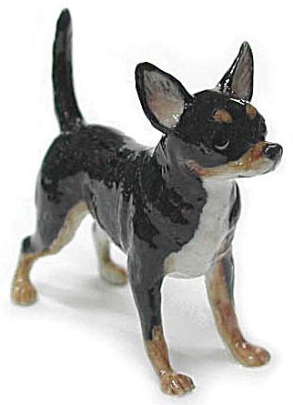 R153b Chihuahua (Image1)