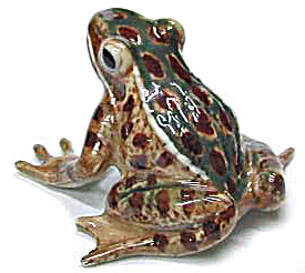R130br Leopard Frog, Green / Brown