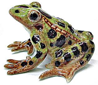 R130C Leopard Frog (Image1)