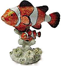R142 Clown Fish (Image1)