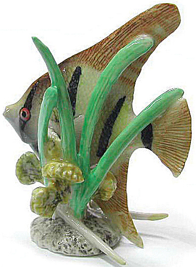 R140 Angel Fish With Seagrass