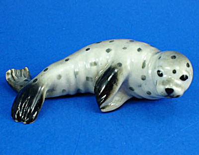 R317c Harbor Seal