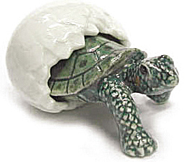 R322A Hatching Tortoise (Image1)