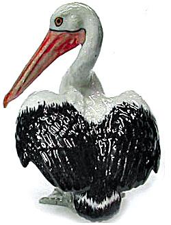R275br Australian Pelican (Image1)