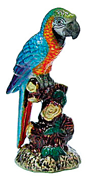 R282c Blue And Gold Macaw