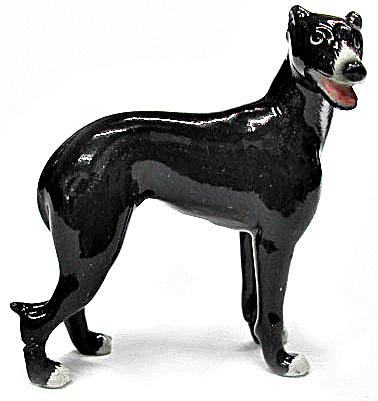 R303Br Black Greyhound (Image1)