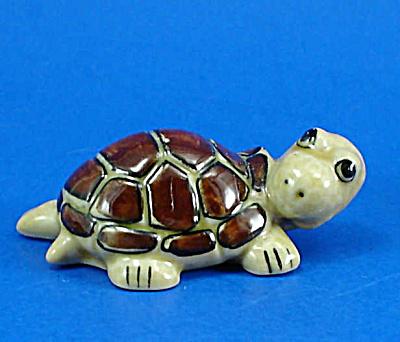 E729 Tortoise (Image1)
