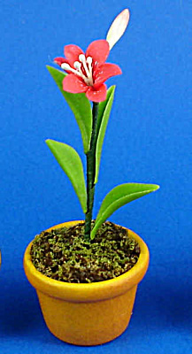Dollhouse Miniature Flower in Clay Pot (Image1)