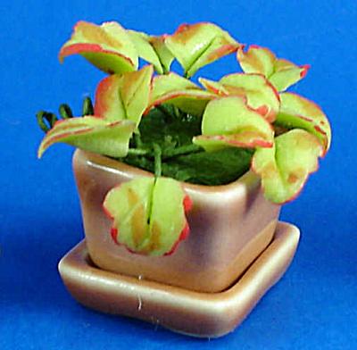 Dollhouse Miniature House Plant (Image1)