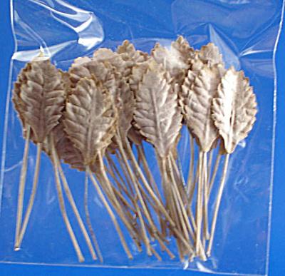 Miniature Paper Leaf for Flower Arrangements (Image1)