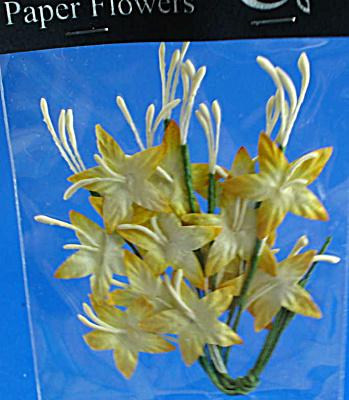 Miniature Paper Flowers (Image1)