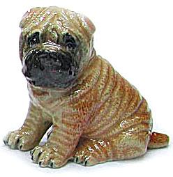 R298r Sharpei Puppy (Image1)