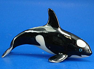 E2071 Killer Whale (Image1)