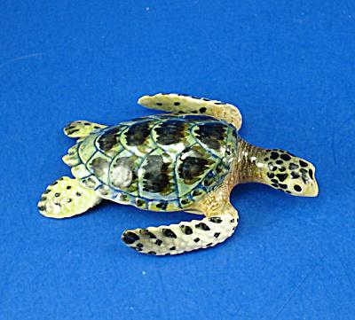 K9771 Green Sea Turtle (Image1)
