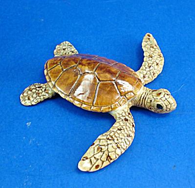 K9761 Loggerhead Sea Turtle (Image1)
