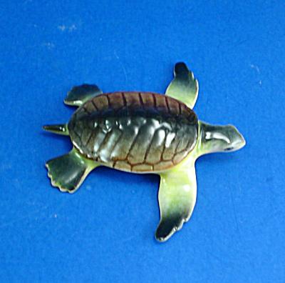 E2081 Baby Sea Turtle (Image1)