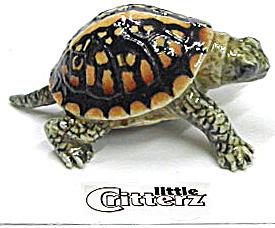little Critterz LC308 Box Turtle (Image1)
