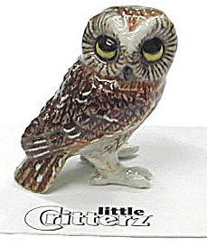 Little Critterz Lc567 Saw-whet Owl