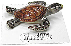 Little Critterz Lc225 Baby Hawksbill Sea Turtle