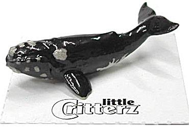 little Critterz LC230 Right Whale (Image1)