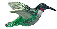 Northern Rose Super Mini Hummingbird (Image1)