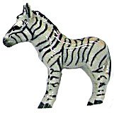 Northern Rose Super Mini Zebra M026