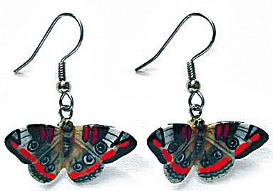 Northern Rose Buckeye Butterfly Earrings (Image1)