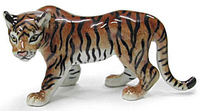 R362 Tiger (Image1)