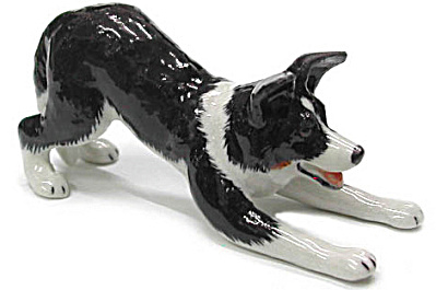 R334 Border Collie