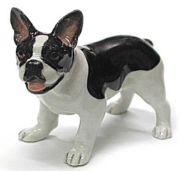 R329 French Bulldog