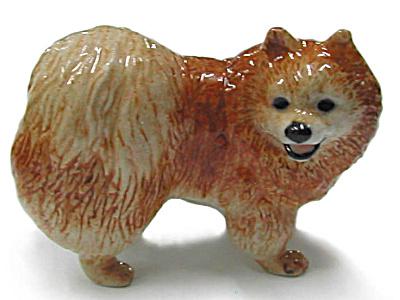 R333r Pomeranian (Image1)