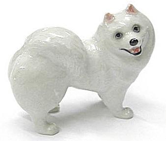 R266r American Eskimo Dog (Image1)