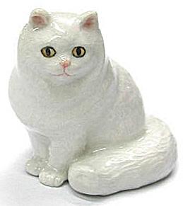 R335r Persian Cat (Image1)