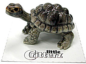 little Critterz LC330 Galapagos Tortoise (Image1)