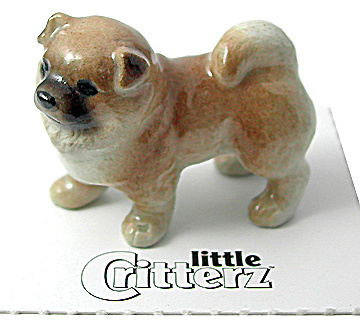 little Critterz LC819 Chow Chow (Image1)