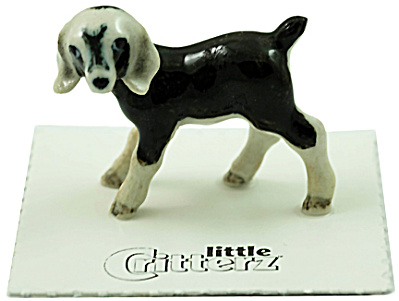 little Critterz LC834 Nubian Goat named Domino (Image1)