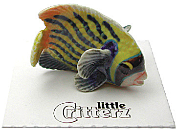 Little Critterz Lc978 Emperor Angelfish