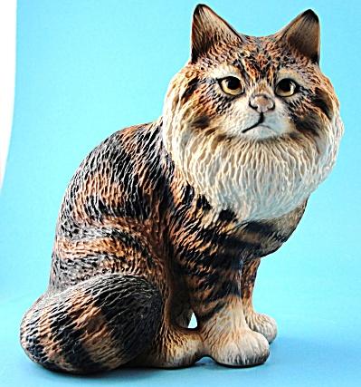 Harvey Knox Kingdom Maine Coon Cat (Image1)
