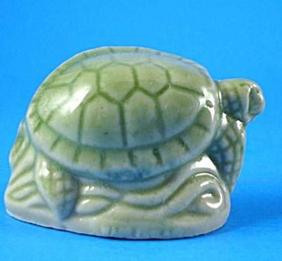 Wade Sea Turtle (Image1)