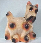 Click here to enlarge image and see more about item a03018: 1940s Carnival Prize Chalkware Scotty Dog