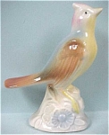 1940s/1950s Pottery Jay Type Bird