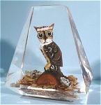 Click to view larger image of Wood Owl in Acrylic (Image1)