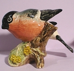 Click here to enlarge image and see more about item a05197: Beswick Bird #1042 Bullfinch