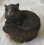 Click to view larger image of Cairn Tim Wolfe Squirrel in Shell Named Sylvia (Image1)