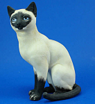 Click to view larger image of Sitting Siamese Cat (Image1)