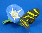 Click here to enlarge image and see more about item a06153: Franklin Mint Porcelain Butterfly on Flower