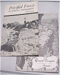 Click here to enlarge image and see more about item e00024: 1940s Petrified Forest & Grand Canyon