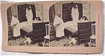 Click here to enlarge image and see more about item e00093: 1897 B.W. Kilburn Stereoview #11497 Children