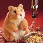 Click here to enlarge image and see more about item f0007: Folkmanis Hamster Hand Puppet