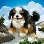Click here to enlarge image and see more about item f0058: Folkmanis Hand Puppet Bernese Mountain Dog